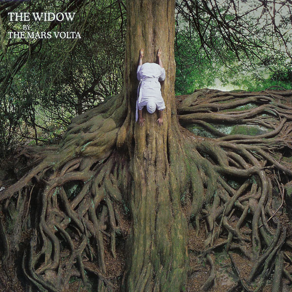 The Widow [Single]: Album Cover